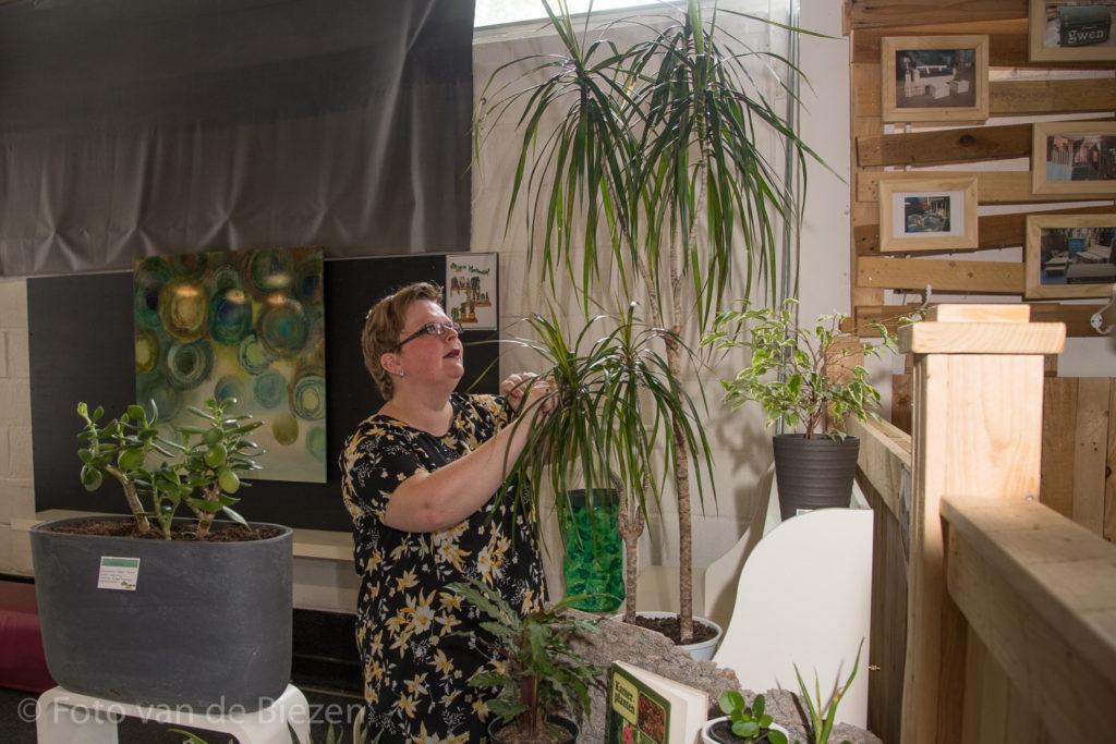 Het plantenasiel van Ramonda Groen